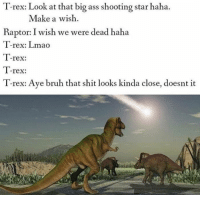 T-rex: Look at that big ass shooting star haha.  Make a wish  Raptor:I wish we were dead haha  I-rex: Lmao  T-rex:  T-rex:  T-rex: Aye bruh that shit looks kinda close, doesnt it