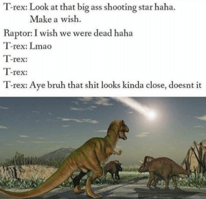 Ass, Aww, and Bruh: T-rex: Look at that big ass shooting star haha.  Make a wish  Raptor: I wish we were dead haha  -rex: Lmao  1-reX:  T-rex:  T-rex: Ave bruh that shit looks kinda close, doesnt it Aww shit , here we go again