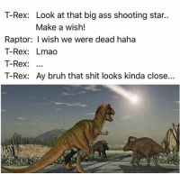 T-Rex: Look at that big ass shooting star..  Make a wish!  Raptor: I wish we were dead haha  T-Rex: Lmao  T-Rex  T-Rex: Ay bruh that shit looks kinda close...
