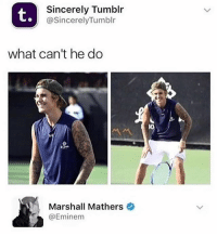 Funny, Instagram, and Meme: t.  Sincerely Tumblr  @SincerelyTumblr  what can't he do  Marshall Mathers  @Eminenm @pubity was voted 'best meme account on instagram' 😂