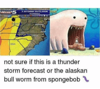 Funny, Worm, and Worms: T-STORM OUTLOOK  THURSDAY  not sure if this is a thunder  storm forecast or the alaskan  bull worm from spongebob