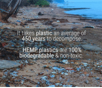 Memes, 🤖, and Ares: t takes plastic an average of  450 years to decompose.  HEMP plastics are 100%  biodegradable & non-toxic
