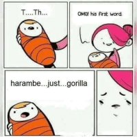 Now she's giving a baby for adoption :D: T....Th...  OMG! his first word  harambe...just...gorilla Now she's giving a baby for adoption :D