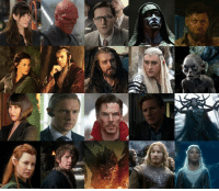 Bilbo, Martin, and Memes: t These are all of the MCU actors that have also had a role in the Lord of the Rings and Hobbit films. An honorable mention to Karl Urban, who played Eomer and will soon be playing Skurge the Executioner in Thor: Ragnarok.  Top Row: Liv Tyler - Marvel: Betty Ross, Middle Earth: Arwen Hugo Weaving: - Marvel: Red Skull, Middle Earth: Elrond Richard Armitage - Marvel: Heinz Kruger, MIddle Earth: Thorin Lee Pace - Marvel: Ronan, Middle Earth: Tharanduil Andy Serkis - Marvel: Ulysses Klaue, Middle Earth: Gollum  Bottom Row: Evangeline Lilly - Marvel: Hope Van Dyne, Middle Earth: Tauriel Martin Freeman - Marvel: Everett Ross, Middle Earth: Bilbo Benedict Cumberbatch - Marvel: Doctor Strange, Middle Earth: Smaug David Wenham - Marvel: Harold Meachum, Middle Earth: Faramir Cate Blanchett - Marvel: Hela, Middle Earth: Galadriel  (Nerds Love Art)