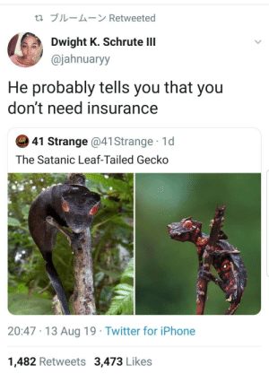 dwight: t1 ブルームーン Retweeted  Dwight K. Schrute lII  @jahnuaryy  He probably tells you that you  don't need insurance  41 Strange @41 Strange 1d  The Satanic Leaf-Tailed Gecko  20:47 13 Aug 19 Twitter for iPhone  1,482 Retweets 3,473 Likes
