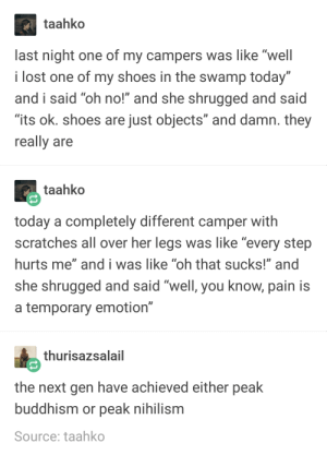 "gen z is going places: taahko  last night one of my campers was like ""well  i lost one of my shoes in the swamp today""  and i said ""oh no!"" and she shrugged and said  ""its ok. shoes are just objects"" and damn. they  really are  taahko  today a completely different camper with  scratches all over her legs was like ""every step  hurts me"" and i was like ""oh that sucks!"" and  she shrügged and said Well, you khow, pain IS  a temporary emotion""  thurisazsalail  the next gen have achieved either peak  buddhism or peak nihilism  Source: taahko gen z is going places"