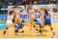 Luksong tinik pa more Lady Eagles!: TAASNYO PA KONTI!  ANOTATALONNABAKO  12  VOLLEYBALL MEMEe Luksong tinik pa more Lady Eagles!
