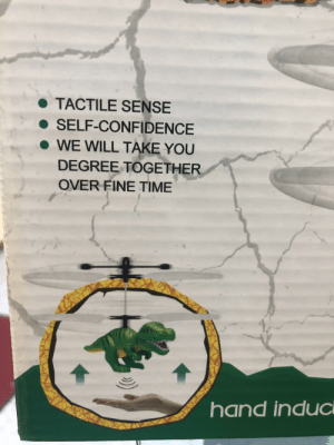 On the back of one of the gift shop items at work: TACTILE SENSE  SELF-CONFIDENCE  WE WILL TAKE YOU  DEGREE TOGETHER  OVER FINE TIME On the back of one of the gift shop items at work