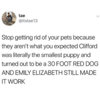 Memes, Work, and Pets: tae  @itstae13  Stop getting rid of your pets because  they aren't what you expected Clifford  was literally the smallest puppy and  turned out to be a 30 FOOT RED DOG  AND EMILY ELIZABETH STILL MADE  IT WORK Get your sh!t together