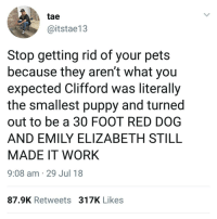 Memes, Work, and Pets: tae  @itstae13  Stop getting rid of your pets  because they aren't what you  expected Clifford was literally  the smallest puppy and turned  out to be a 30 FOOT RED DOG  AND EMILY ELIZABETH STILL  MADE IT WORK  9:08 am 29 Jul 18  87.9K Retweets 317K Likes He has a point 🤔😂