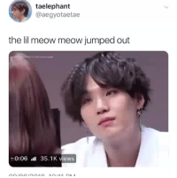Tumblr, Blog, and Jumped: taelephant  @aegyotaetae  the lil meow meow jumped out  0:06l 35.1K views sugabbybts: IF HE BATTED HIS EYELASHES AT ME, I WOULD PROBABLY BE SPEAKING FROM THE GRAVE. cr: aegyotaetae