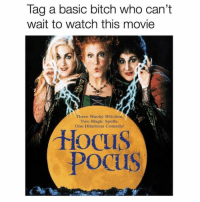 Basic Bitch, Bitch, and Magic: Tag a basic bitch who can't  wait to watch this movie  zY  合  Three Wacky Witches.  Two Magic Spells.  One Hilarious Comedy  Hocu  Pocus Meee! ( @drinksforgayz )
