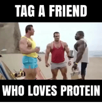 Memes, Protein, and 🤖: TAG A FRIEND  6  WHO LOVES PROTEIN TAG a protein lover 🤣💪
