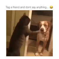 Say Anything..., Friend, and Anything: Tag a friend and dont say anything...