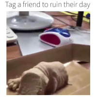 Still has me rattled: Tag a friend to ruin their day Still has me rattled