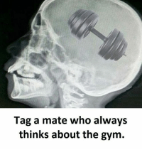 Twitter: BLB247 Snapchat : BELIKEBRO.COM belikebro sarcasm meme Follow @be.like.bro: Tag a mate who always  thinks about the gym. Twitter: BLB247 Snapchat : BELIKEBRO.COM belikebro sarcasm meme Follow @be.like.bro
