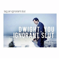 Ignorant, Memes, and Savage: tag an ignorant slut  DWIGHT, YOU  IGNORANI SLUT BE SAVAGE 💀 START FIGHTS 😳 Don't forget to swipe :) link in bio to shop