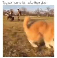 Tag Someone, Day, and Make: Tag someone to make their day Day made