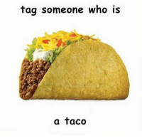 taco: tag someone who is  a taco