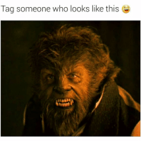 Ol chewbacca lookin a$$ 😂😂😂👇: Tag someone who looks like this Ol chewbacca lookin a$$ 😂😂😂👇