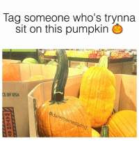Fam, Pumpkin, and Tag Someone: Tag someone who's trynna  sit on this pumpkin  CE OF USA  gan Tag up, fam! 😂🎃