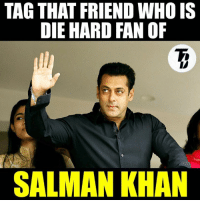 Start tagging ! ❤❤❤ I wish i could tag the whole india ! #Raj & #VD: TAG THAT FRIEND WHO IS  DIE HARD FAN OF  SALMAN KHAN Start tagging ! ❤❤❤ I wish i could tag the whole india ! #Raj & #VD