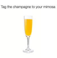 @sarcasm_only: Tag the champagne to your mimosa @sarcasm_only