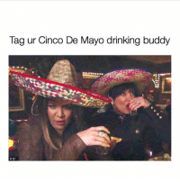 Drinking, Cinco De Mayo, and Girl Memes: Tag ur Cinco De Mayo drinking buddy  OE! Mine is @drinksforgayz