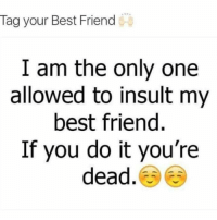 Best Friend, Memes, and Best: Tag your Best Friend  I am the only one  allowed to insult my  best friend  If you do it you're  dead.
