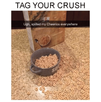 I HATE WHEN I DO THAT! Take a look Sara Jean Underwood: TAG YOUR CRUSH  Ugh, spilled my Cheerios everywhere I HATE WHEN I DO THAT! Take a look Sara Jean Underwood