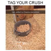 TAG YOUR CRUSH: TAG YOUR CRUSH  Ugh, spilled my Cheerios everywhere TAG YOUR CRUSH