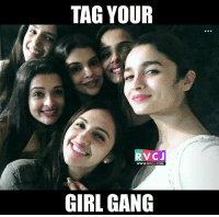 Memes, Gang, and Your Girl: TAG YOUR  V CJ  WWW.RVCJ.COM  GIRL GANG Tag your girl gang.. rvcjinsta