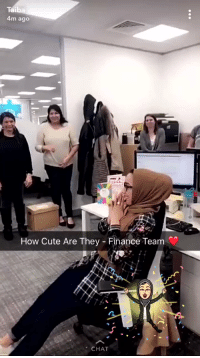 Birthday, Cute, and Finance: Taib  4m ago  How Cute Are They - Finance Team  CHAT the entire finance team learned sign language and sang happy birthday to surprise their co-worker who is deaf on her birthday 😭😭https://t.co/DqH1KH6bhO