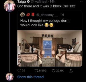 At least gimme a Swedish cell not Gitmo (via /r/BlackPeopleTwitter): Taiga @vafinest 14h  Got there and it was D block Cell 132  @_shaaaay 1d  How I thought my college dorm  would look like  REBS  79  22.6K  L16,503  Show this thread At least gimme a Swedish cell not Gitmo (via /r/BlackPeopleTwitter)