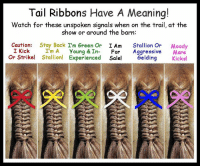 Memes, 🤖, and Tails: Tail Ribbons Have A Meaning!  Watch for these unspoken signals when on the trail, at the  show or around the barn  Caution  Stay Back I'm Green Or  I Am  Stallion Or  Moody  I Kick  I'm A Young & In  For  Aggressive  Mare  or Strike! Stallion! Experienced  Sale  Gelding  Kicks! Did you know this?