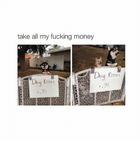 Dogs, Fucking, and Money: take all my fucking money  Dog Kisses  ISSE s How much for a bj
