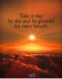Memes, 🤖, and Grateful: Take it day  by day and be grateful  for every breath  POSITIVE  ENERGY Take it day by day and be grateful for every breath. positiveenergyplus