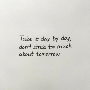 By Day: Take it day by day,  don't stress too much  about tomorroww
