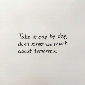 By Day: Take it day by day,  don't stress too much  about tomorrow