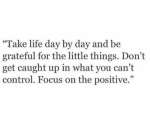 "Life, Control, and Focus: ""Take life day by day and be  grateful for the little things. Don't  get caught up in what you cant  control. Focus on the positive."""