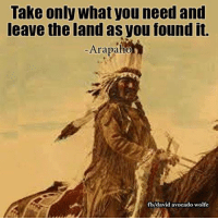 Memes, Avocado, and Wolf: Take only What you need and  leave the land as you found it.  Arapaho  fb/david avocado wolfe David Wolfe