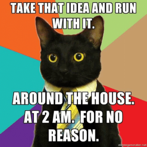 business cat is back: TAKE THAT IDEA AND RUN  WITH IT.  AROUND THE HOUSE.  AT 2 AM FOR NO  REASON.  memegenerator.net business cat is back