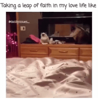 Life, Love, and Memes: Taking a leap of faith in my love life like  @daddy ssues