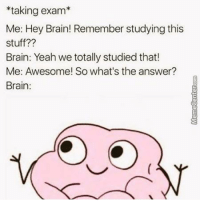 Dammit, brain!: taking exam  Me: Hey Brain! Remember studying this  stuff??  Brain: Yeah we totally studied that!  Me: Awesome! So what's the answer?  Brain Dammit, brain!