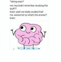 Lmao basically me when I was doing my junior cert: *taking exam  me: hey brain! remember studying this  Stuff  brain: yeah we totally studied that!  me: awesome! so what's the answer?  brain: Lmao basically me when I was doing my junior cert