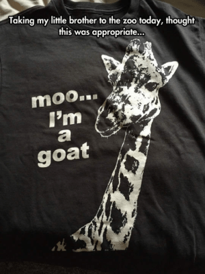 Tumblr, Goat, and Blog: Taking my little brother to the zoo today, thought  this was appropriate...  moo  I'm  goat srsfunny:Long Horse Shirt