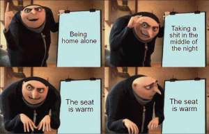 Being Alone, Home Alone, and Meme: Taking  shit in the  middle of  the night  au  Being  home alone  The seat  is warm  The seat  is warm srsfunny:This meme is still relevant damnit