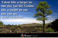 Talent hits a target no one else can hit; Genius hits a target no one else can see. - Arthur Schopenhauer: Talent hits a target no  one else can hit; Genius  hits a target no one  else can see.  Arthur Schopenhauer  Brainy  Quote  copyright 2012 xplore, Inc. Talent hits a target no one else can hit; Genius hits a target no one else can see. - Arthur Schopenhauer