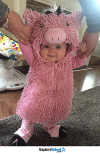Memes, 🤖, and Piglet: TalentA  Explore Having a bad Friday? Here's a little baby piglet 🐷💖