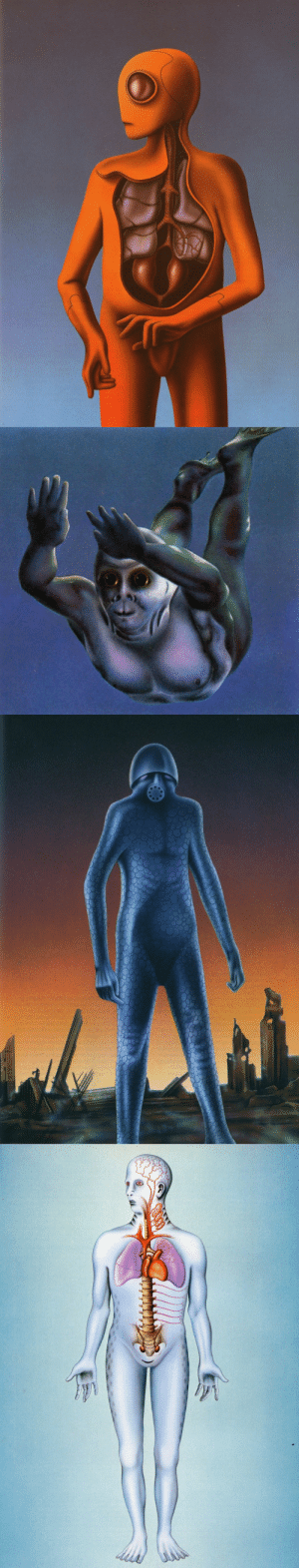 talesfromweirdland:Illustrations of evolutionary possibilities from the book, Future Man (1984): man genetically modified to live underwater (images 2 and 4), in space (image 1), and as a hardened war machine (3).: talesfromweirdland:Illustrations of evolutionary possibilities from the book, Future Man (1984): man genetically modified to live underwater (images 2 and 4), in space (image 1), and as a hardened war machine (3).